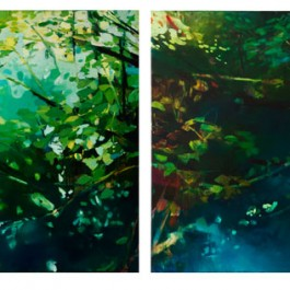 Beneath the Surface (diptych)
