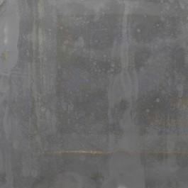 Xylem Series- Argyria 9