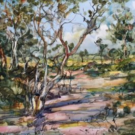 Karriview Bushland