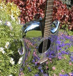 Vaustin Guitar