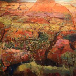 Pilbara Range and Gorge