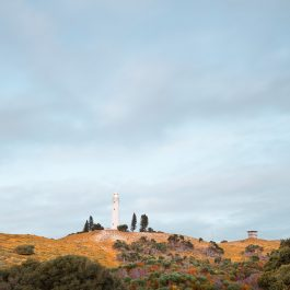 Wadjemup Lighthouse RI8945Ph (Edition of 1)