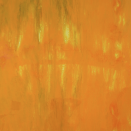 Xylem Series – Haplostele 7