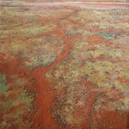 Dried Up Creek, Pilbara