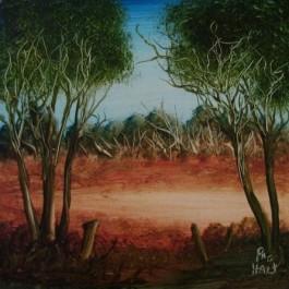 Landscape 1182/6