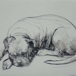 Ollic Asleep (represented in the Margaret Woodward monograph, plate no.99)