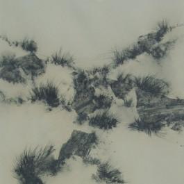 Sand Dunes 1978
