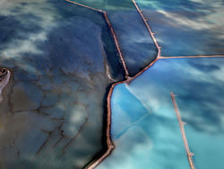 Shark Bay 1634