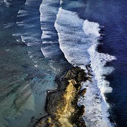 Shark Bay 2749