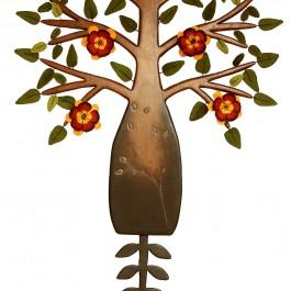 Drosera Microphylla (Sundew)