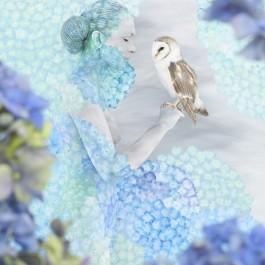 Utopia 2011/13 – Hydrangea Cradled Owl