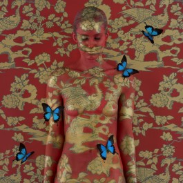 Florence's Archives 2013- Phonix ii (with butterflies) (Edition of 6)