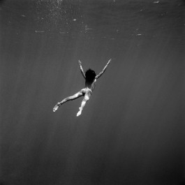 The dive (Edition of 20)