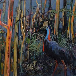Forest Cassowary