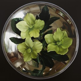 Hellebores in silver bowl