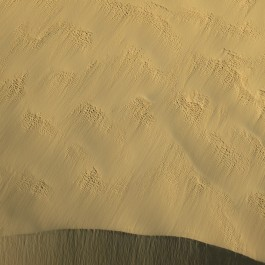 Sand dune, Nambung NP, WA (Edition of 7)