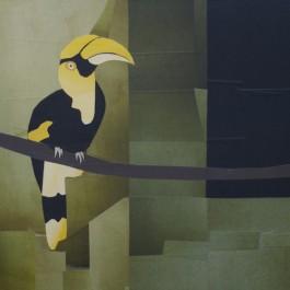 Hornbill – Yangon Zoo
