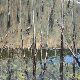 Blackwood Sacred Kingfisher