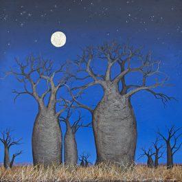 Boabs Under the Kimberley Sky