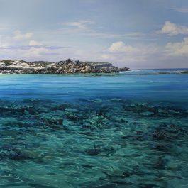 Salmon Bay