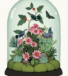 Botanical Dome (Edition of 50)