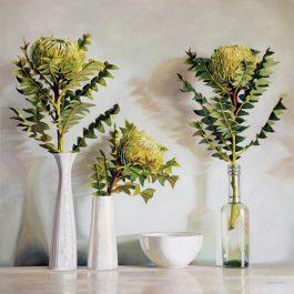 Banksia Baxteri Still Life
