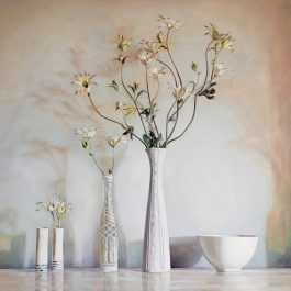 Flannel Flower Still Life