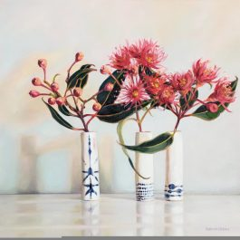 Pink Flowering Gum Blossom