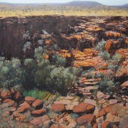 Into the Gorge, Karijini