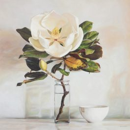 Magnolia from my sister