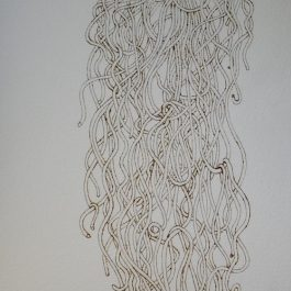 Spaghetti Spaghetti Spaghetti