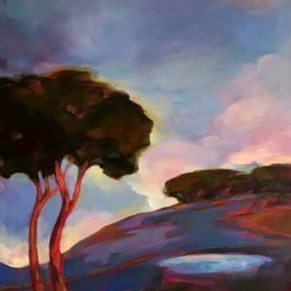 Dawn Sky Paddock