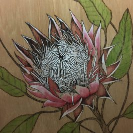 Pyrography Protea on Panel with Polymer