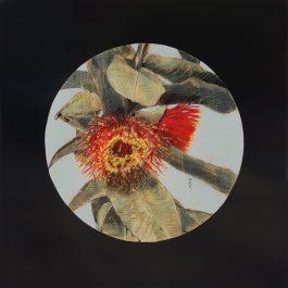 Mottlecah Flowers 1