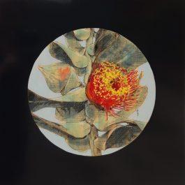Mottlecah Flowers 2