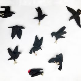 A Mourning of Ravens
