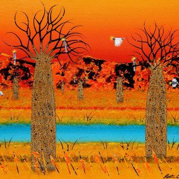 Boabs – Kimberley Landscape