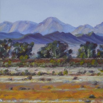 Flinders Ranges 8