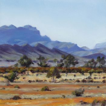 Flinders Ranges 13