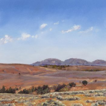 Flinders Ranges 14