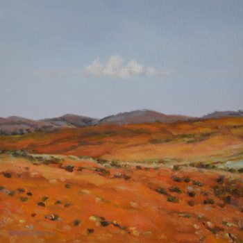 Flinders Ranges 16