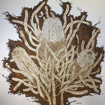 Banksia Study
