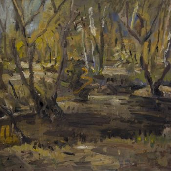 Featured Artwork of Majella Creek #1